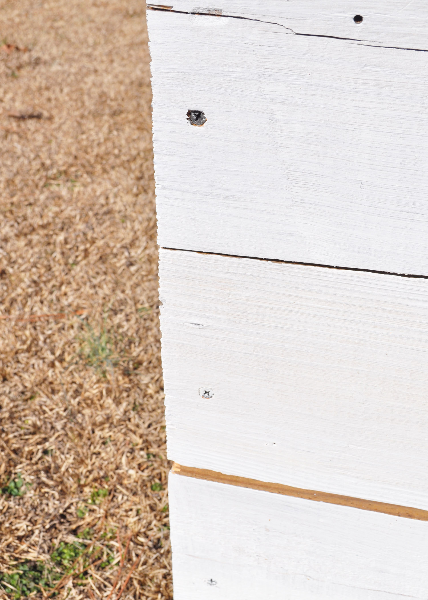 Itchy Barn Imports Backdropbox